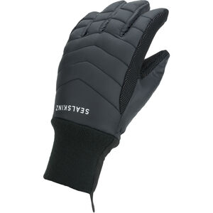 Sealskinz Waterproof All Weather Lightweight Insulated Gloves Black Black