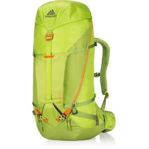 Gregory Alpinisto 50 Backpack lichen green lichen green
