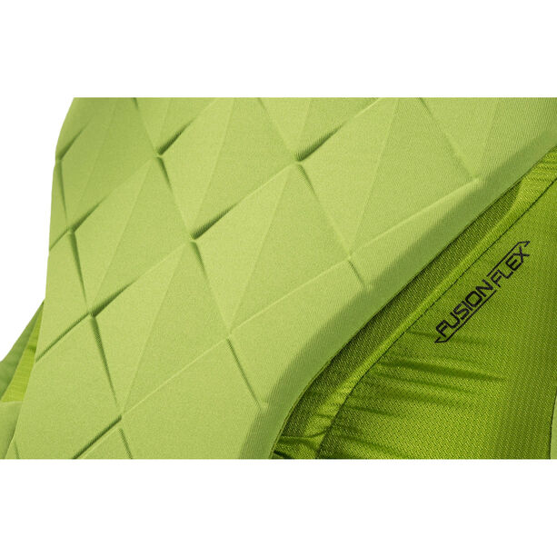 Gregory Alpinisto 35 Backpack lichen green
