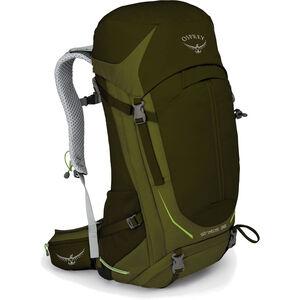 Osprey Stratos 36 Backpack Herr gator green gator green