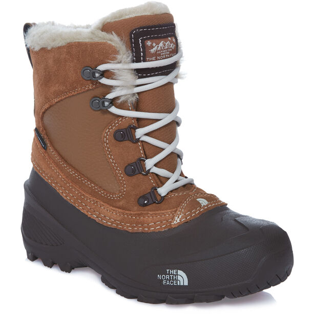 The North Face Shellista Extreme Boots Barn dchndbn/mnltivy