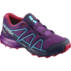 Salomon Speedcross CSWP Shoes Barn grape juice/evening blue/blue bird grape juice/evening blue/blue bird