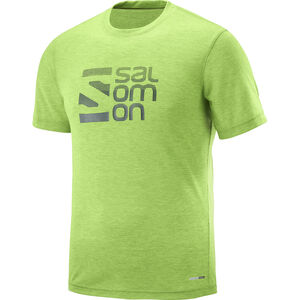Salomon Explr Graphic SS Tee Herr greenery greenery