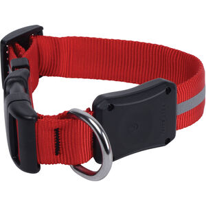 Nite Ize Nite Dawg LED Dog Collar Small red red