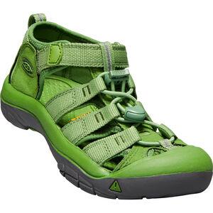 Keen Newport H2 Sandals Barn fluorite green fluorite green