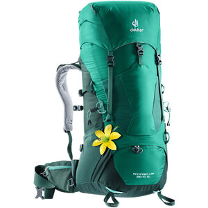 Deuter Aircontact Lite 35+10 SL Backpack Dam alpinegreen-forest alpinegreen-forest