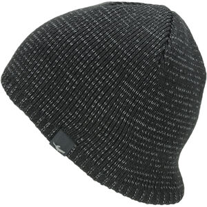 Sealskinz Waterproof Cold Weather Reflective Beanie Black Black