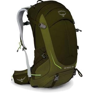 Osprey Stratos 34 Backpack Herr gator green gator green