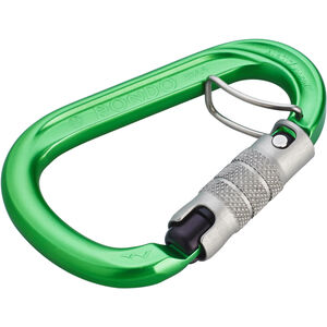 AustriAlpin HMS Rondo 3-Way Autolock Carabiner with Selfie green anodized green anodized
