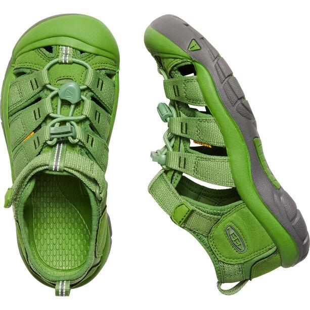 Keen Newport H2 Sandals Ungdomar fluorite green