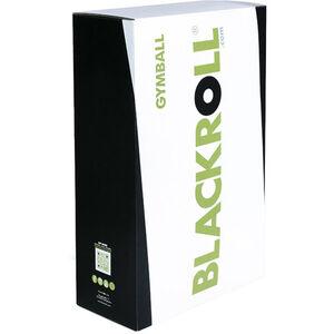 Blackroll Gymball black black