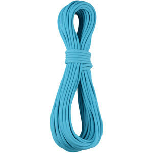 Edelrid Apus Pro Dry Rope 7,9mm 60m icemint icemint