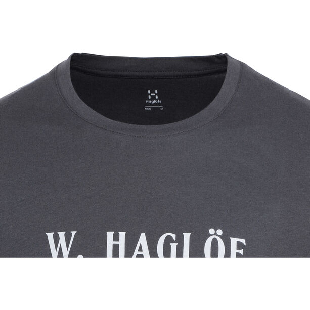 Haglöfs Camp Tee Herr slate/haze