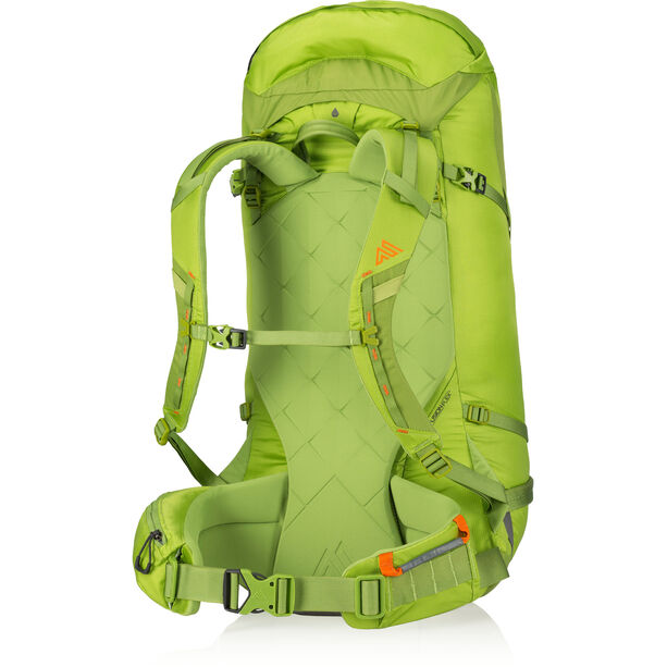 Gregory Alpinisto 50 Backpack lichen green