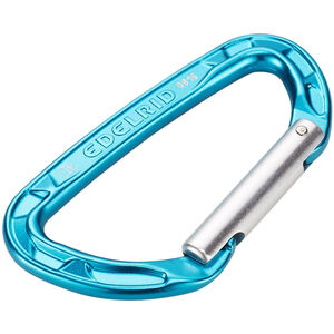 Edelrid Pure Straight Carabiner icemint icemint