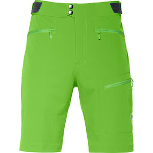Norrøna Falketind Flex1 Shorts Herr clean green clean green
