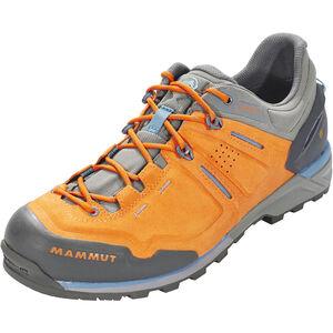 Mammut Alnasca Low GTX Shoes Herr dark radiant-grey dark radiant-grey