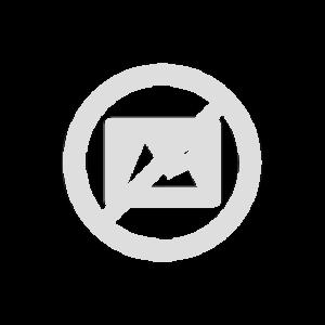 Norrøna /29 Logo Beanie infrared