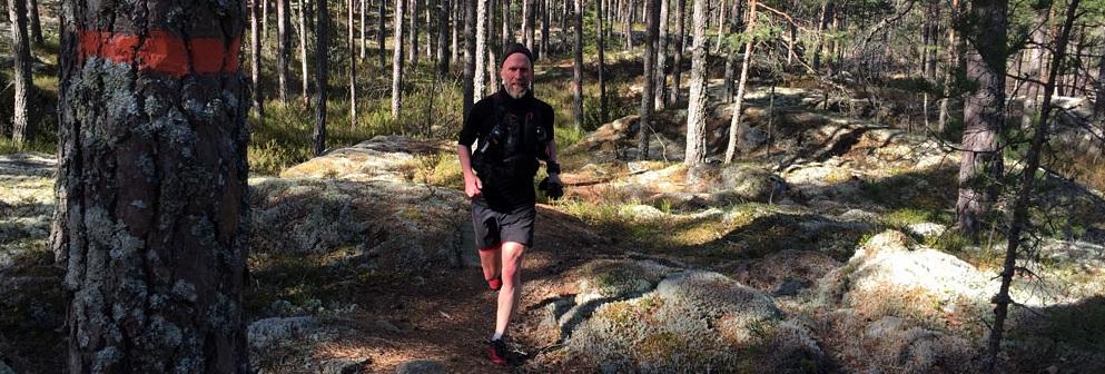 Niklas Holmström